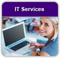 IT Services jobs